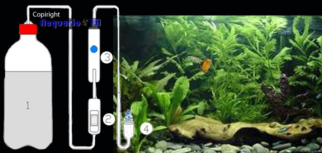 kit impianto co2 per piante acquario   ebay - Bollicine Acquario Fai Da Te